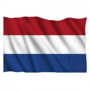 Vlaggen Terug In Raadszaal Steenbergen