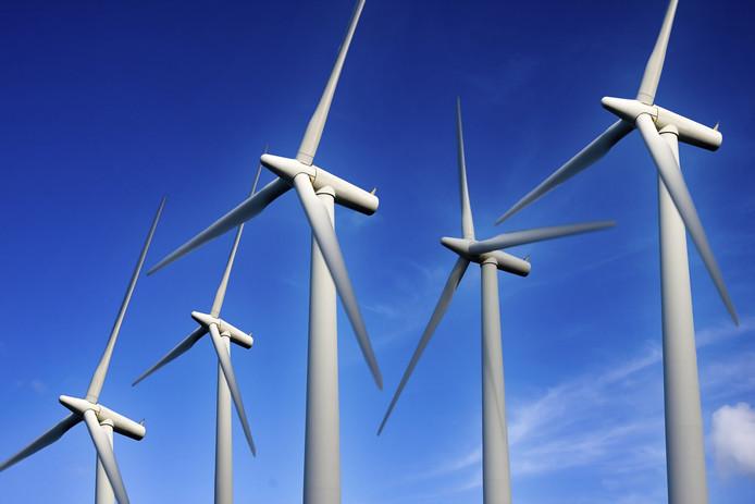 Voorlopig Nog Geen Windpark Dinteloord